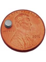 Magnets: 1/8 X 1/16 (50) comparaison