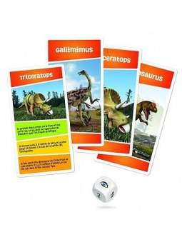 Recreaction : Dinosaures cartes