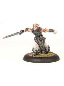Retribution Soulless Escort warmachine