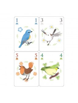 Songbirds cartes