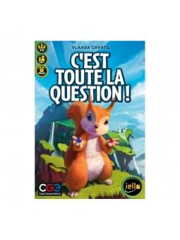 C'est Toute La Question! jeu