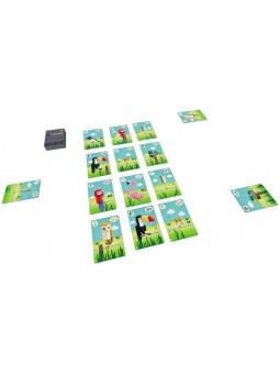 Cubirds cartes