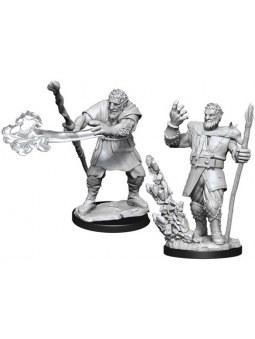 D&D Minis Male Firbolg Druid