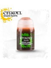 Citadel : Reikland Fleshshade shade